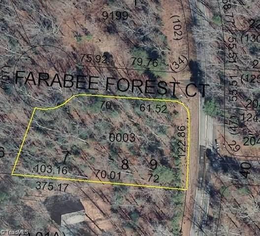 125 Farabee Forest Court, Lexington, NC 27292 (MLS #975544) :: Ward & Ward Properties, LLC
