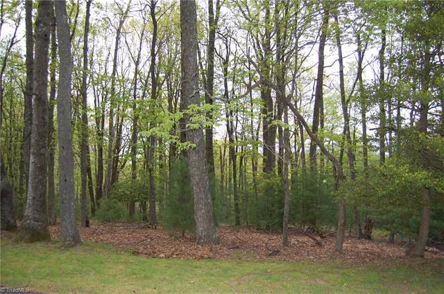 3 Hickory Hill Lane, Roaring Gap, NC 28668 (MLS #977037) :: Ward & Ward Properties, LLC