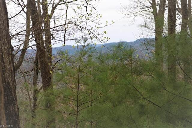 246 Grannys Ridge Road, Ferguson, NC 28624 (#982055) :: Mossy Oak Properties Land and Luxury