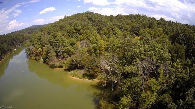 Mars Mountain Trail, Boomer, NC 28606 (MLS #989264) :: Team Nicholson