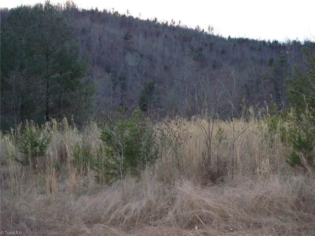 0 Sheets Gap Road, Millers Creek, NC 28651 (MLS #989631) :: Team Nicholson