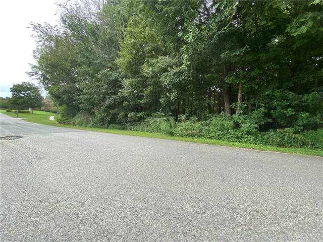 198 Ashmoor Lane, Lexington, NC 27295 (MLS #991920) :: Greta Frye & Associates   KW Realty Elite