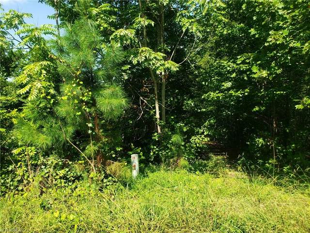 4801 Rabbit Run Drive, Haw River, NC 27258 (MLS #992050) :: Ward & Ward Properties, LLC