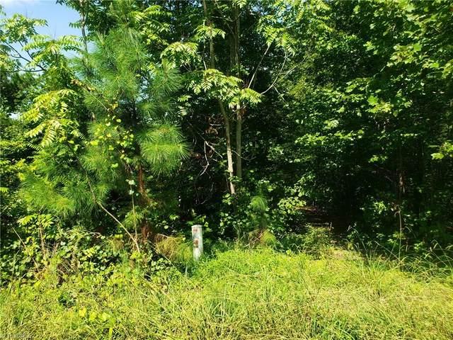 4801 Rabbit Run Drive, Haw River, NC 27258 (#992050) :: Premier Realty NC