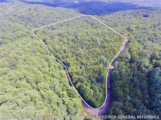23 Natures Way Drive, Hays, NC 28635 (MLS #993182) :: Ward & Ward Properties, LLC