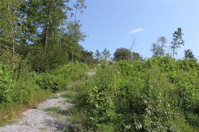1 Hollowview Drive, Wilkesboro, NC 28697 (#993463) :: Mossy Oak Properties Land and Luxury