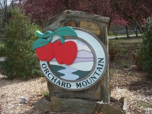 00 Jonathan Drive, Lowgap, NC 27024 (MLS #994732) :: Berkshire Hathaway HomeServices Carolinas Realty