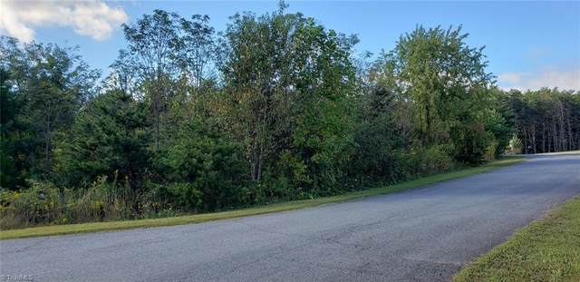 620 Austin Park Drive, Rural Hall, NC 27045 (#996687) :: Mossy Oak Properties Land and Luxury