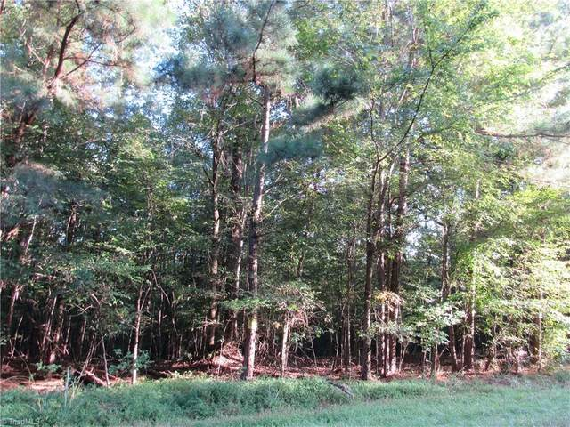 1 Shady Hollow Road, Staley, NC 27355 (MLS #997030) :: Berkshire Hathaway HomeServices Carolinas Realty