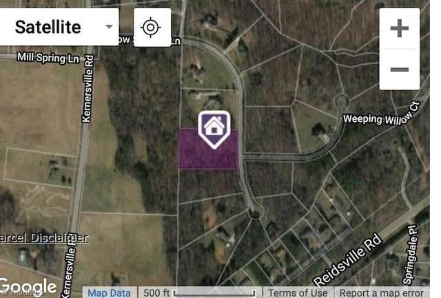 8730 Willow Springs Lane, Belews Creek, NC 27009 (MLS #998195) :: Berkshire Hathaway HomeServices Carolinas Realty