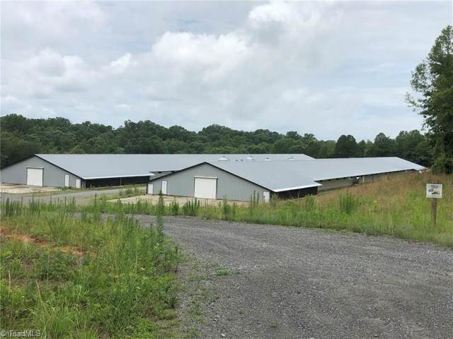 319 White Pine Trail, Elkin, NC 28621 (MLS #998831) :: Team Nicholson