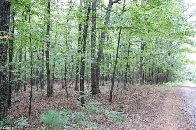 000 Raven Ridge Trail, Dobson, NC 27017 (MLS #999186) :: Berkshire Hathaway HomeServices Carolinas Realty