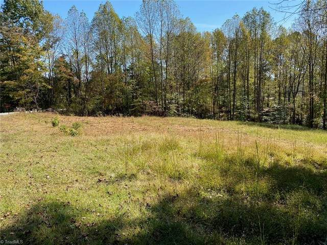 0 Johnson Ridge Road, Elkin, NC 28621 (MLS #999231) :: Team Nicholson