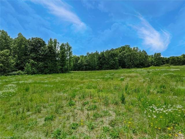114 Potters Road, Woodleaf, NC 27054 (#002971) :: Mossy Oak Properties Land and Luxury