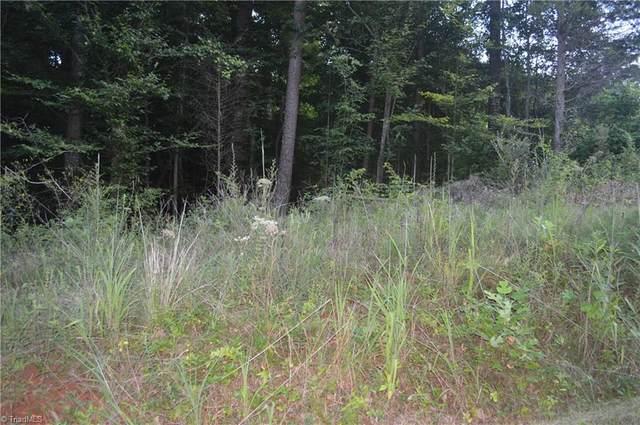 2320 Old Us Highway 421 E, Yadkinville, NC 27055 (#1039462) :: Mossy Oak Properties Land and Luxury