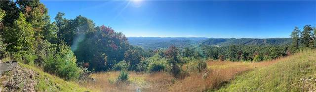 149 Buck Mountain Road, Purlear, NC 28665 (#1042864) :: Mossy Oak Properties Land and Luxury