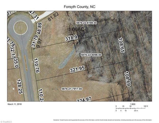 71 Lake At Lissara, Lewisville, NC 27023 (MLS #688594) :: Banner Real Estate