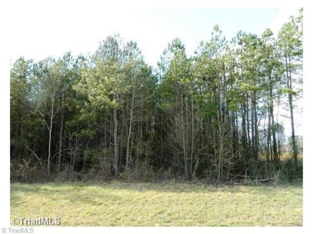 6599 Bobwhite Lane, Browns Summit, NC 27214 (MLS #757049) :: HergGroup Carolinas