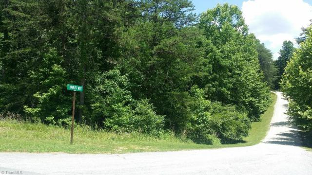 0 Hamlet Way Road, Eden, NC 27288 (MLS #761804) :: Lewis & Clark, Realtors®