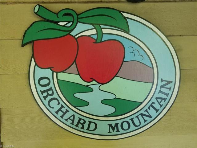 88 Jonathan Drive, Lowgap, NC 27024 (MLS #850399) :: Lewis & Clark, Realtors®