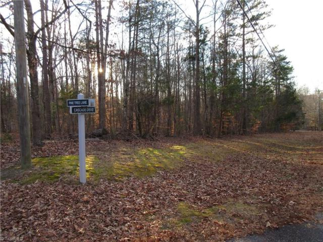 236 Cascade Drive, High Point, NC 27265 (MLS #870442) :: Lewis & Clark, Realtors®
