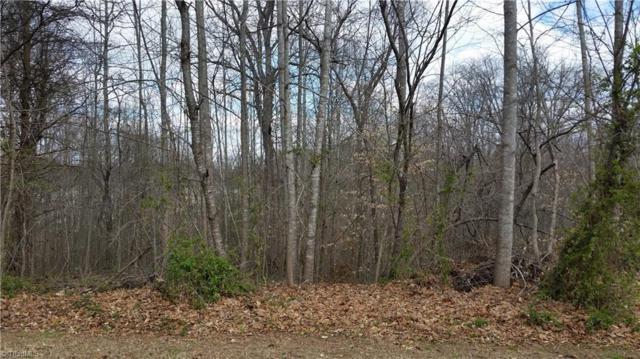 997 Terrace Drive, Lexington, NC 27295 (MLS #877617) :: Kristi Idol with RE/MAX Preferred Properties