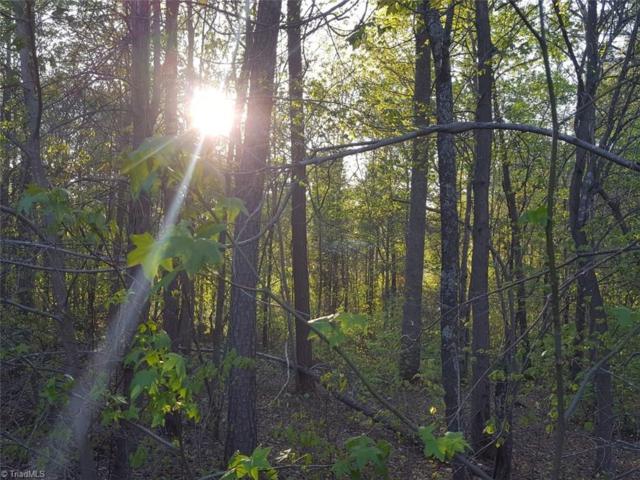 152 Mountain Ridge Drive, Lexington, NC 27292 (MLS #883007) :: HergGroup Carolinas