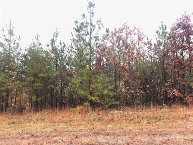 8876 Colgate Road, Stokesdale, NC 27357 (#909474) :: Premier Realty NC