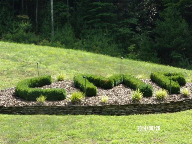 0 Chestnut Mountain Farms Parkway, Mcgrady, NC 28649 (MLS #922031) :: HergGroup Carolinas