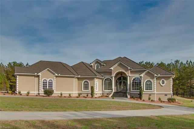 366 Larkington Drive, Siler City, NC 27344 (MLS #922334) :: Kristi Idol with RE/MAX Preferred Properties