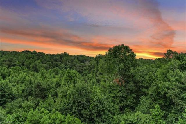 0 Keystone Drive, Summerfield, NC 27358 (MLS #940170) :: Greta Frye & Associates | KW Realty Elite
