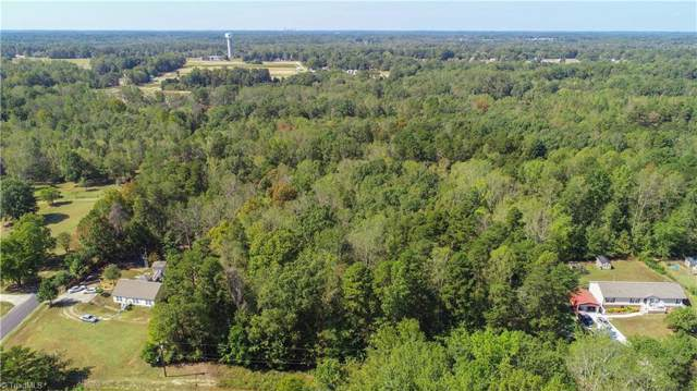 310 Martingale Drive, Gibsonville, NC 27249 (#952452) :: Mossy Oak Properties Land and Luxury