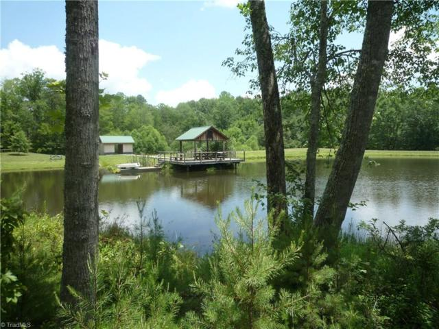 0 Donnie Lawrence Road, Westfield, NC 27053 (MLS #782124) :: Banner Real Estate