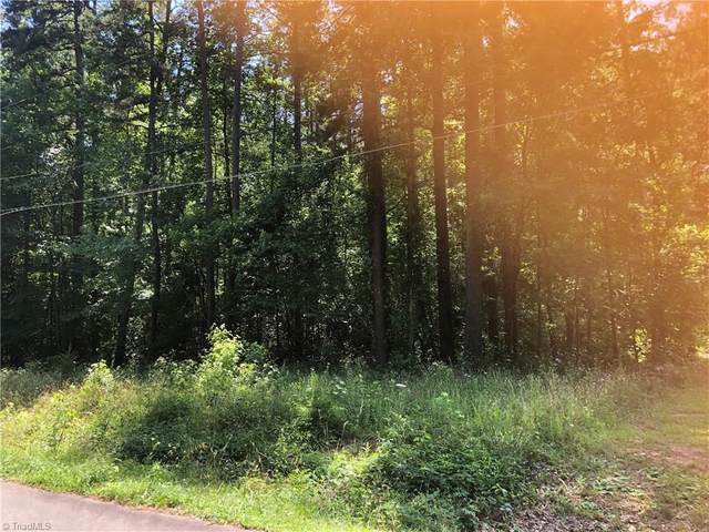 308 Martingale Drive, Gibsonville, NC 27249 (#981942) :: Mossy Oak Properties Land and Luxury