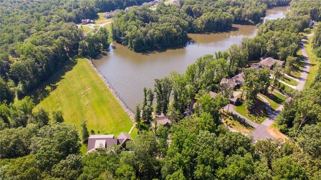 9687 Lissara Camp Court, Lewisville, NC 27023 (#983377) :: Mossy Oak Properties Land and Luxury