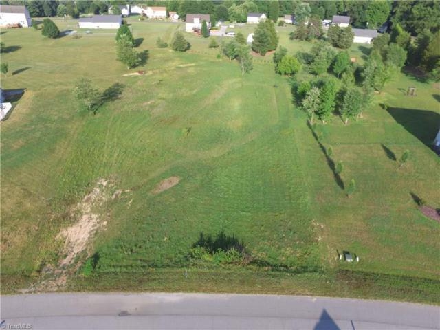 6388 Nolichucky Drive, Walkertown, NC 27051 (MLS #891355) :: Kristi Idol with RE/MAX Preferred Properties