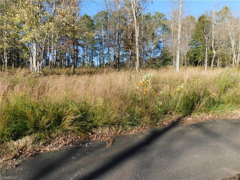 Lot # 3 Pheasant Trail - Photo 1
