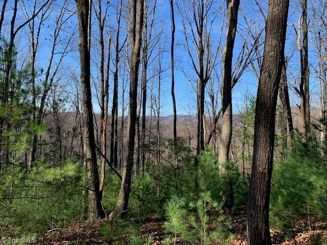 0 Powder Horn Estates Road, Deep Gap, NC 28618 (#1005596) :: Rachel Kendall Team