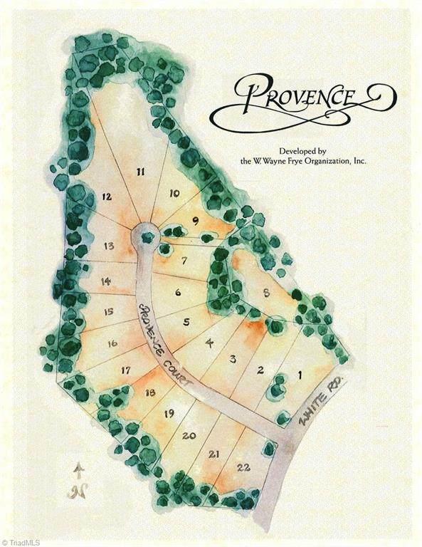 129 Provence Court, King, NC 27021 (MLS #1007939) :: Berkshire Hathaway HomeServices Carolinas Realty