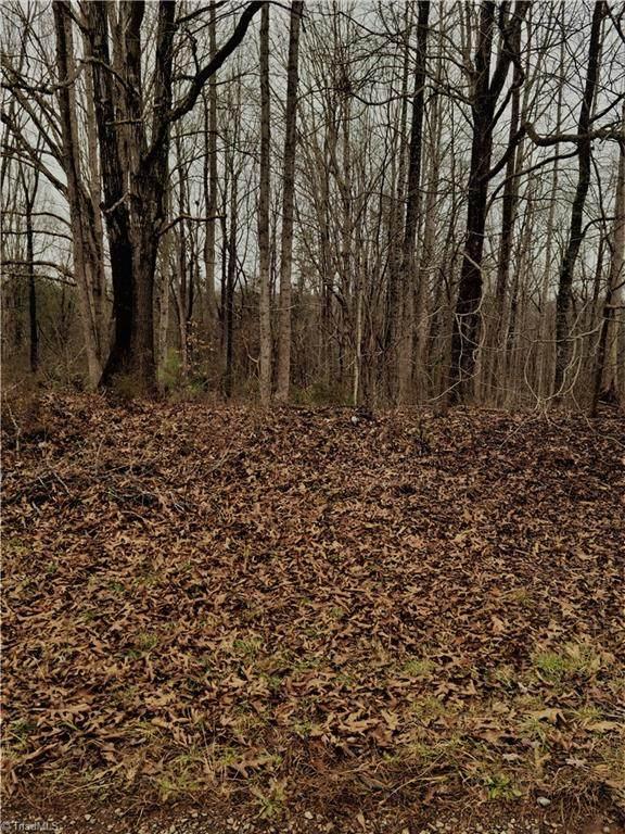 367 Cabin Creek Drive - Photo 1