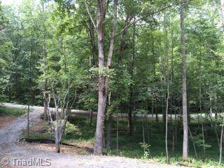 353 Buena Vista Drive, Pilot Mountain, NC 27041 (MLS #1015717) :: Ward & Ward Properties, LLC
