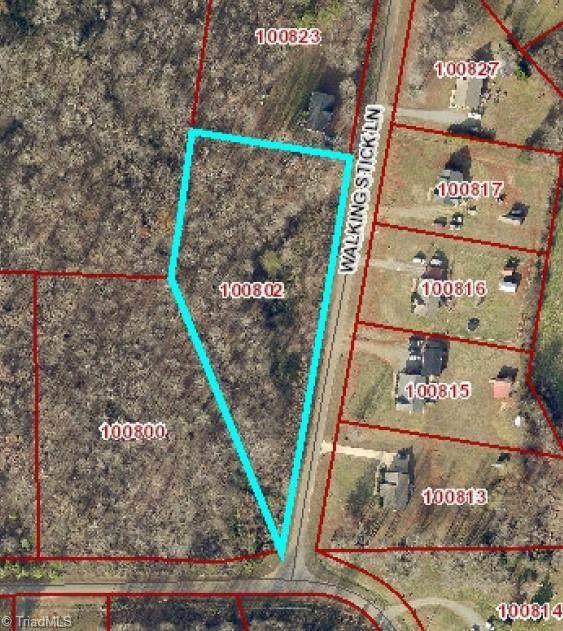 7590 Walking Stick Lane, Liberty, NC 27298 (MLS #1017935) :: Lewis & Clark, Realtors®