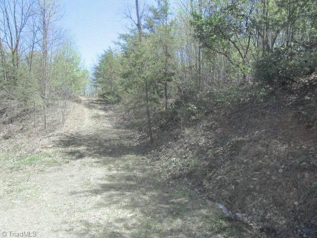 000 Green Point Lane, Boomer, NC 28606 (MLS #1019696) :: Berkshire Hathaway HomeServices Carolinas Realty