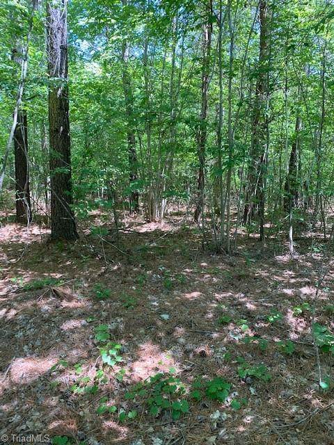 6816 Pritchett Woods Drive, Browns Summit, NC 27214 (MLS #1025938) :: EXIT Realty Preferred