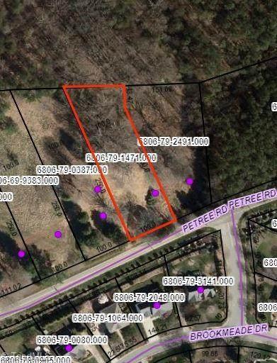 969 Petree Road, Winston Salem, NC 27106 (MLS #1027170) :: Ward & Ward Properties, LLC
