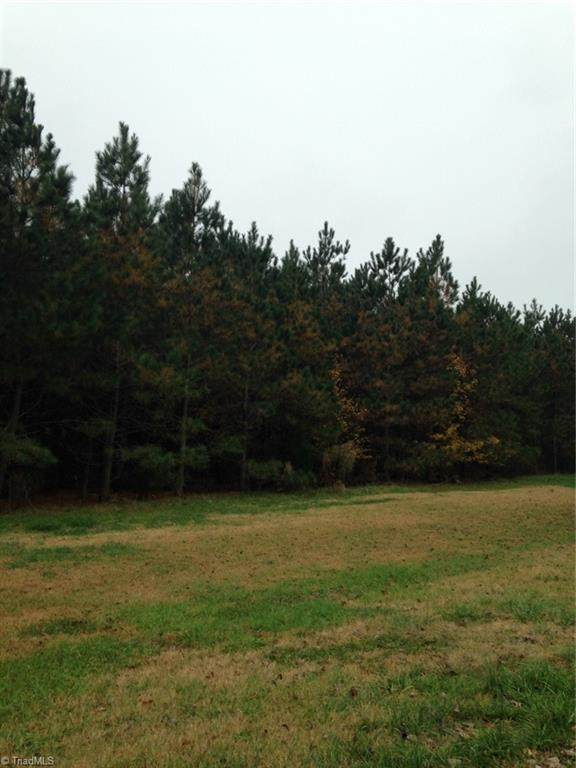 1469 Chimney Rock Drive, Kernersville, NC 27284 (MLS #1030139) :: Greta Frye & Associates | KW Realty Elite