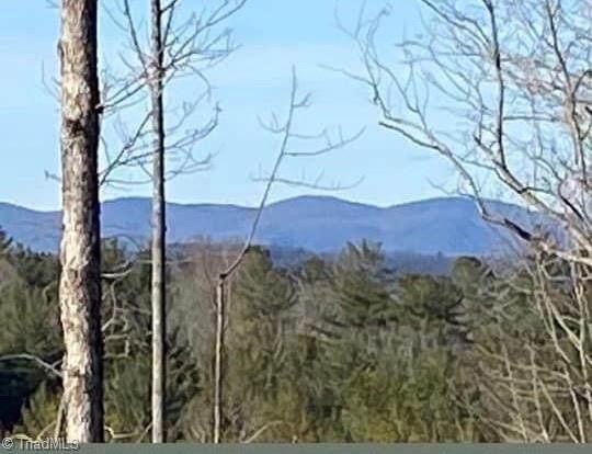 TBD Wildwood Shady Lane, North Wilkesboro, NC 28659 (#1034146) :: Rachel Kendall Team