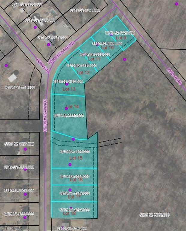 1135 Tommys Lake Road, Winston Salem, NC 27105 (#1043334) :: Mossy Oak Properties Land and Luxury