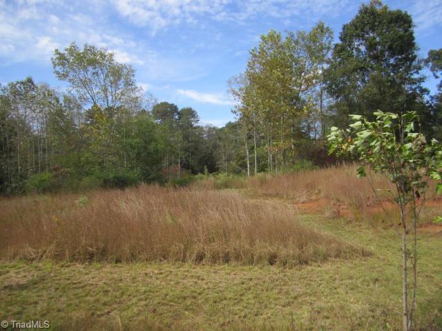 1045 Shenandoah, Boonville, NC 27011 (MLS #768134) :: HergGroup Carolinas