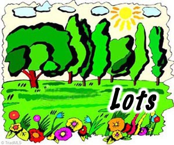 0 Cypress Hill Drive, Eden, NC 27288 (MLS #779591) :: Lewis & Clark, Realtors®